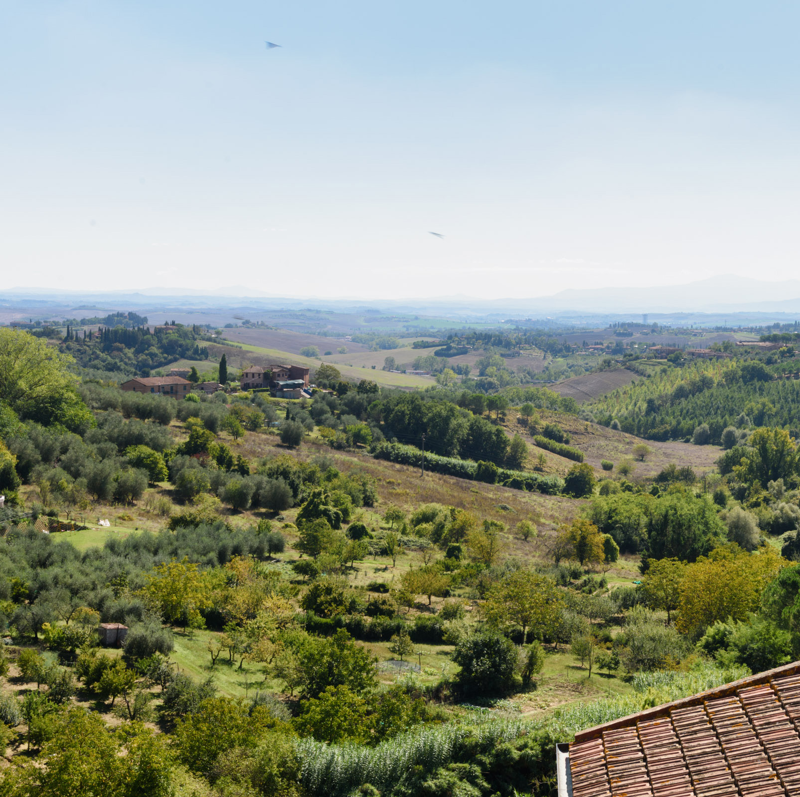 apartment_bnb_siena_italy_marco_portannese – Marco Portannese ...